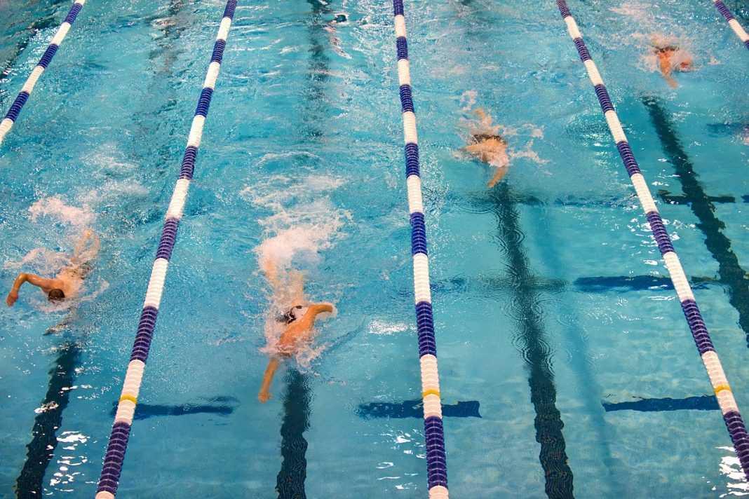 swimming 659903 1280